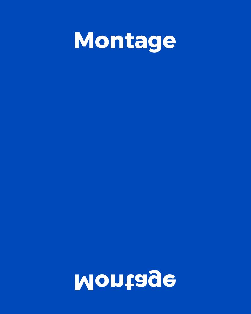 MONTAGE_portfolio_01